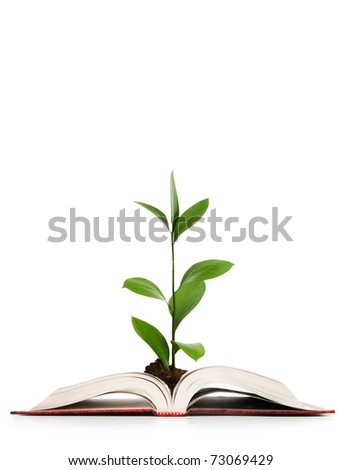 Knowledge concept - Leaves growing out of book