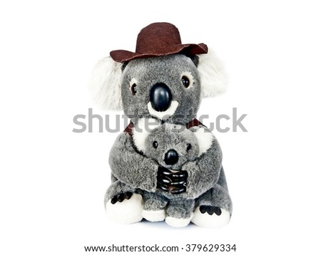 Koala bears isolated on white background - stock photo