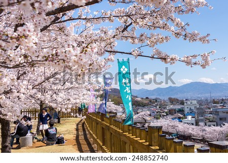 Kofu, Japan - April 4, 2014: Sakura blossom at Kofu castle park at Kofu, Yamanashi, Japan on April 4, 2014. - stock photo