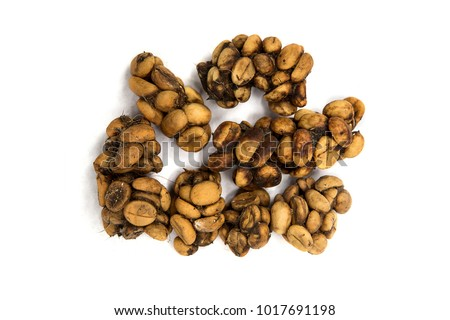 Excretion Stock Images Royalty Free Images Amp Vectors