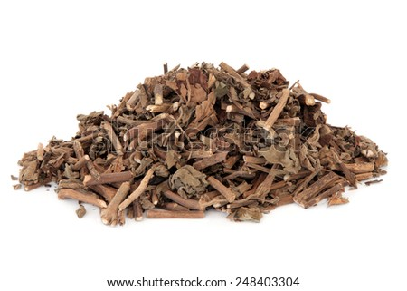 Korean mint herb used in chinese herbal medicine over white background. Tu huo xiang. - stock photo
