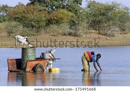 KOUPELA, BURKINA FASO - JANUARY 14 : filling and transportation of water bottles at lake is for women to irrigate crops, january 14, 2008 - stock photo