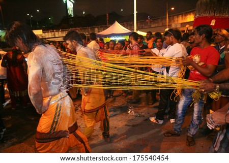 KUALA LUMPUR,MALAYSIA - JAN 16, 2014: 3 Thaipusam devotees pulled by rows of hooks piercing their back at Batu Cave, Kuala Lumpur Malaysia.