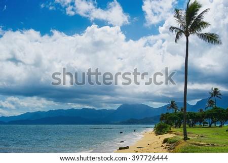Kualoa Beach Park seaside view with palm trees, Hawaii, Oahu - stock photo