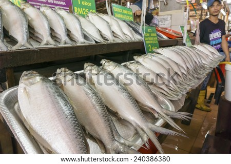KUCHING, MALAYSIA - NOV 9:Fish vendor selling salted Terubok at the Satok Wet Market in Kuching, Sarawak on Nov 9, 2014. Terubok(Tenualosa toli) is highly prized among Malaysians for its meat and eggs
