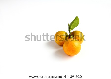 Kumquat placed on white background - stock photo