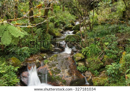 KUNDASANG, MALAYSIA - 18TH FEBRUARY 2013; View of small waterfall at Mesilau park. Mesilau park is one of the gateway to climb Mount Kinabalu in Sabah, Malaysia. - stock photo