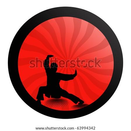 Kung-fu - stock photo