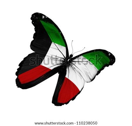 Kuwaiti flag butterfly flying, isolated on white background - stock photo
