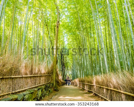 KYOTO, JAPAN - MAR 26: The path to bamboo forest in Kyoto, Japan on March 26, 2011.  Kyoto was the Imperial capital of Japan for more than one thousand years.
