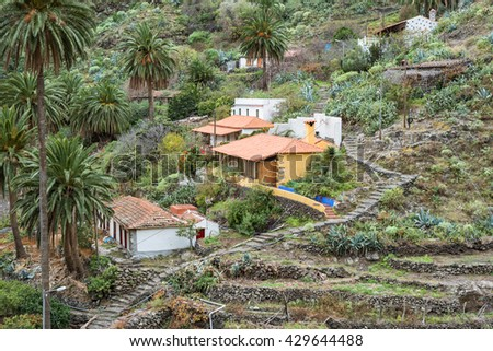 LA GOMERA, SPAIN - FEBRUARY 13. Small hamlet in the canyon Barranco de la Laja on La Gomera February 13, 2016. The Barranco is a well watered ravine with barrages to irrigation the terraced fields - stock photo