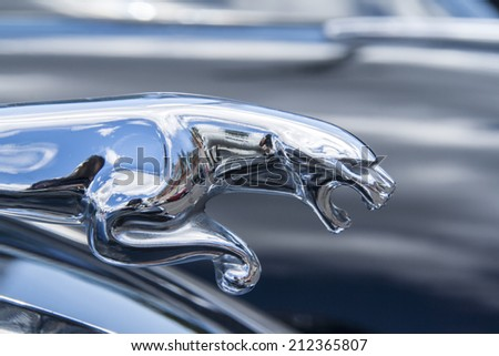 hood ornament car of a jaguar