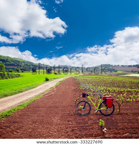 La Rioja vineyard fields biking in The Way of Saint James with bike - stock photo
