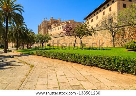 La Seu Cathedral palm trees city garden spring, Palma de Mallorca, Spain - stock photo