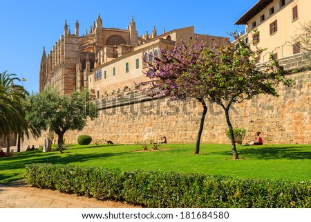La Seu Cathedral palm trees city garden spring, Palma de Mallorca, Spain - stock photo