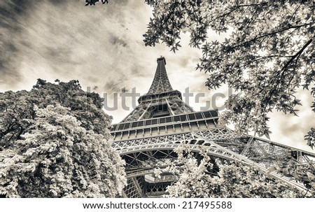 La Tour Eiffel in Paris surrounded by trees in summer. - stock photo