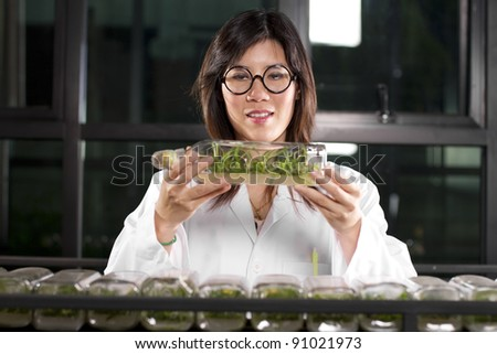 Lab work, Laboratory girl checking growth level of plants. - stock photo