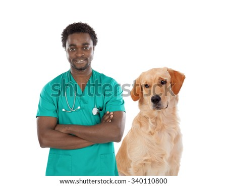 Labrador dog with african veterinarian isolated on a white background