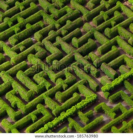 Labryinth maze for historic Hawaiian cannery - stock photo