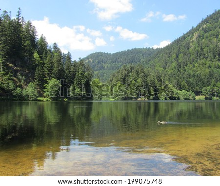 Lac de Retournemer: an idyllic lake situated in Xonrupt, in the beautiful Vosges mountains of France. The area is a popular vacation destination. - stock photo