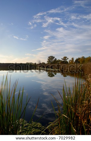 Lacy Clouds Reflected in Wildlife Pond