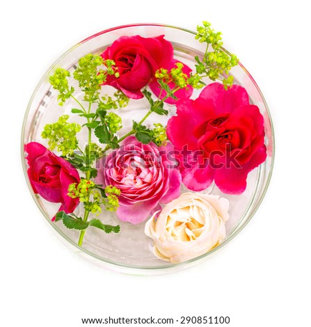 Lady`s mantle and roses in a bowl with water for decoration - stock photo