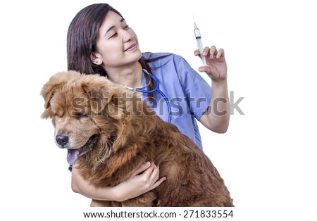 Lady veterinary doctor with a dog preparing a syringe with medicine for a sick dog. Isolated in white background.