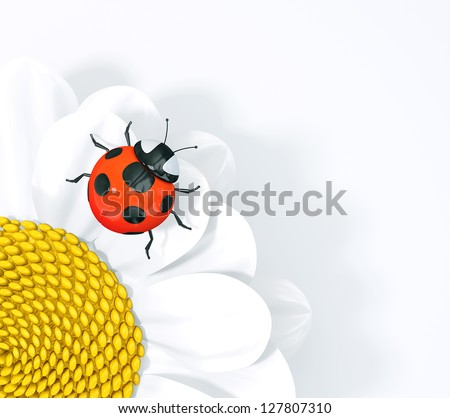 ladybird  on a flower isolated  a  white background - stock photo