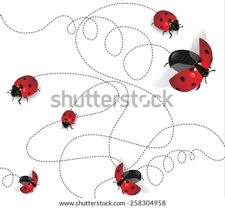 Ladybugs on white background - stock photo