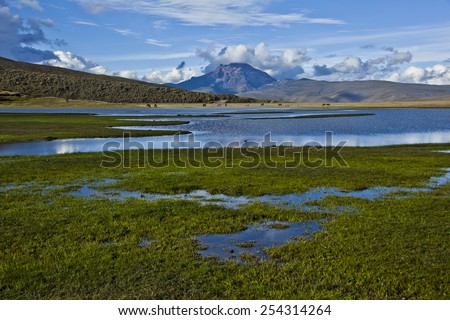 Lagoon, moorland and mountains in the Cotopaxi National Park - stock photo