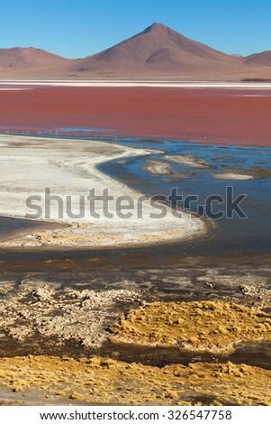 Laguna Colorada. Bolivia - stock photo