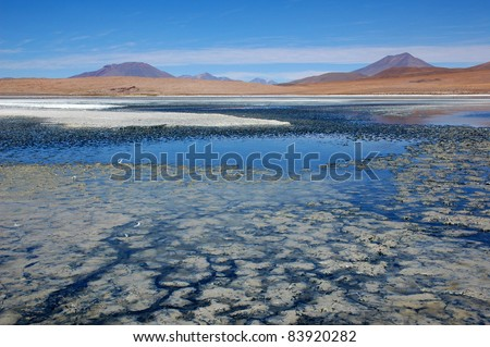 Laguna Colorada, Salar de Uyuni, Bolivia - stock photo