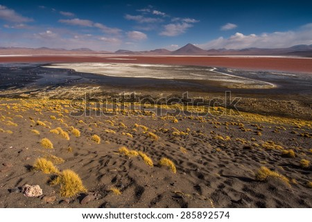 Laguna colorado, the southern part of Bolivia - stock photo