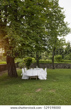 Laid-out wedding table at the park