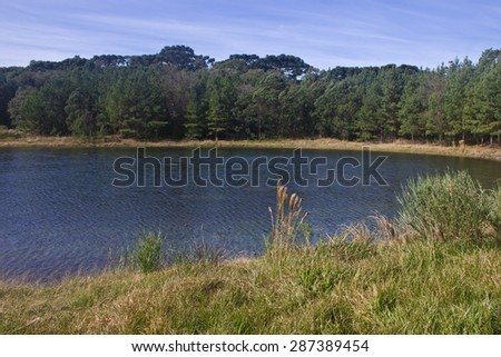 Lake and forest at Nova Petropolis - Rio Grande do Sul - Brazil