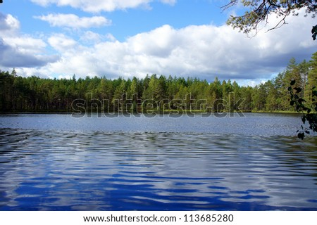 Lake and trees on a background of the blue sky