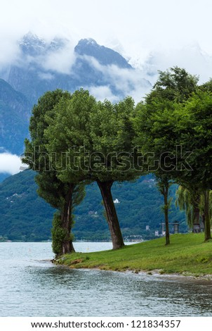 Lake Como (Italy) summer cloudy view with trees on shore