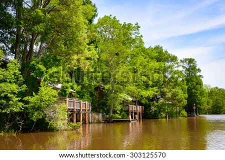 Lake Fausse Pointe State Park - stock photo
