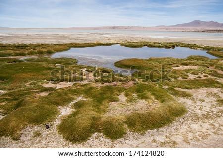 Lake in Atacama Desert - stock photo