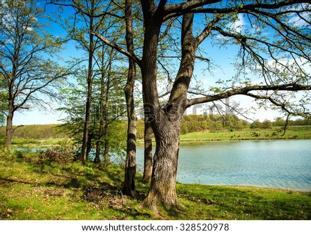lake in mountain surrounded by oak wood - stock photo