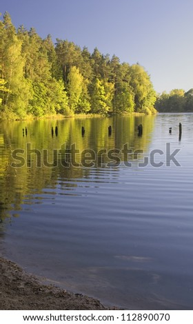 lake in wood, sunny weather - stock photo