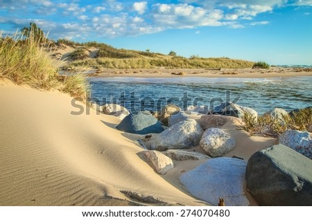 Lake Michigan Coast. Sand dunes along the pristine shores of Lake Michigan. Ludington State Park. Ludington, Michigan. - stock photo