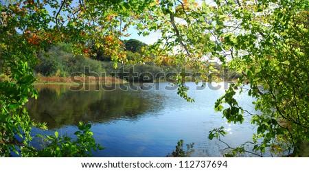 Lake panorama - stock photo