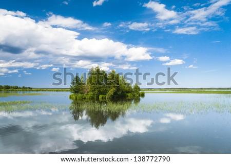 Lake Serenity Forest Around - stock photo
