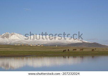 Lake Son-Kul, Kyrgyzstan. Horses grazing. - stock photo