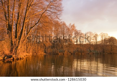 lake sunset. red light on withered trees, - stock photo