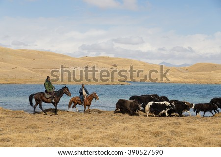 Lake Tulpar, Kyrgyzstan - October 07, 2014: Photograph of yak shepherds on horses.