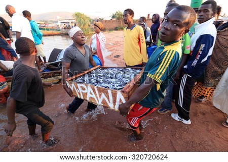 LAKE VICTORIA - TANZANIA - JULY 10, 2015: Unidentified fishermen carrying and trading fish on July 10, 2015 in Kigoma at Lake Victoria, Tanzania - stock photo