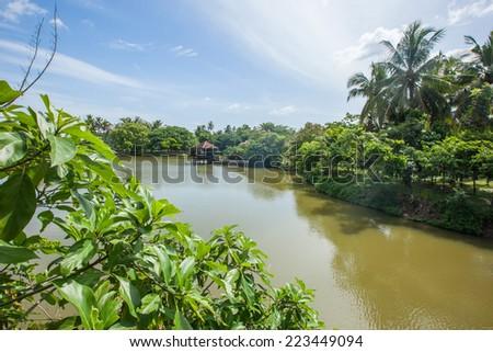 Lake view palm, tree and hut at Bangkok - stock photo
