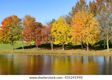 Lake with Ducks and Colorful Fall Trees - stock photo